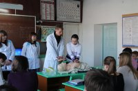 Профориентационная работа в школах г. Барыша.